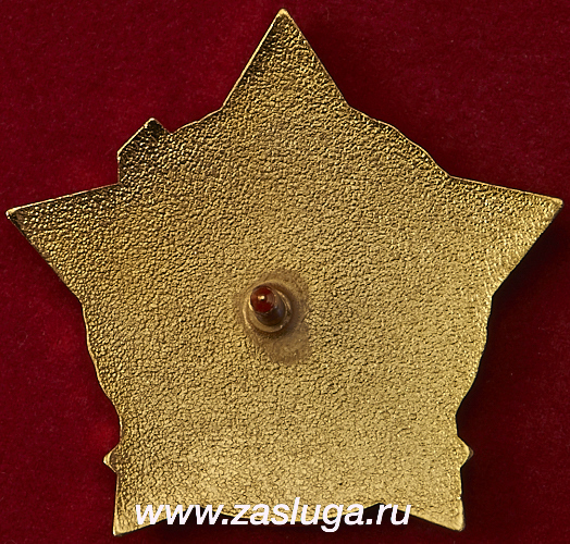 http://www.zasluga.ru/catalog_photos/vpku2diviz2.jpg